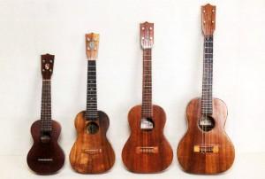 ukulele_type